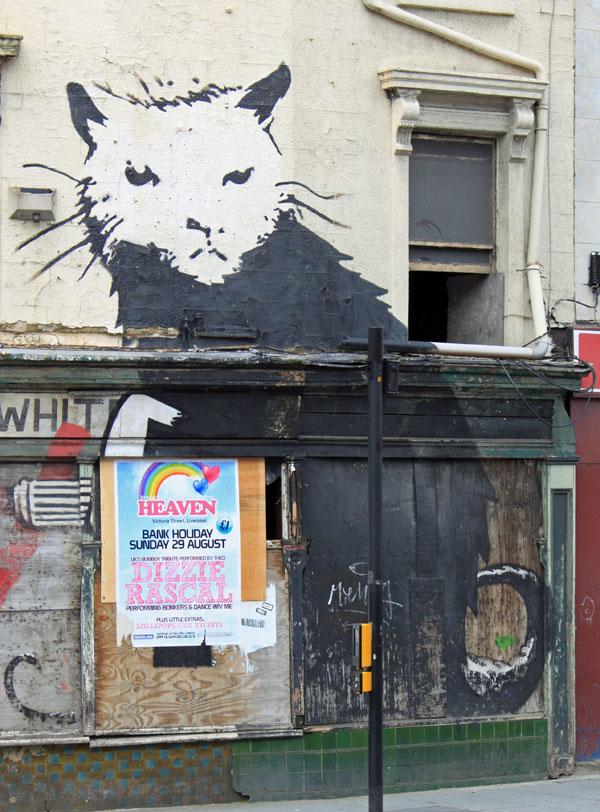 Banksy Rat Liverpool Close Up