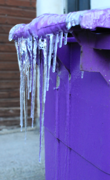 Icicles on dust bin, Liverpool, November 2010