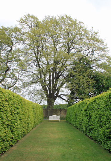Bench in Hardwick Hall gardens