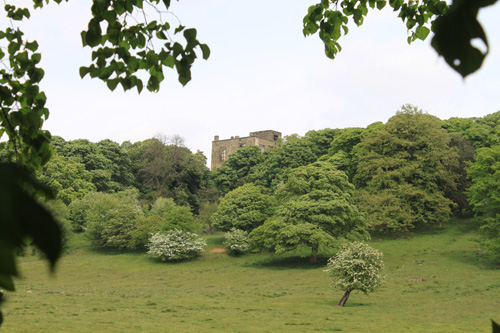 Hardwick Old Hall photographed from hedge beside The Hardwick Inn