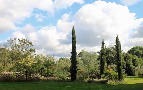 Kew Gardens Mediteranean Garden