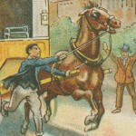 How to Stop a Runaway Horse Illustration