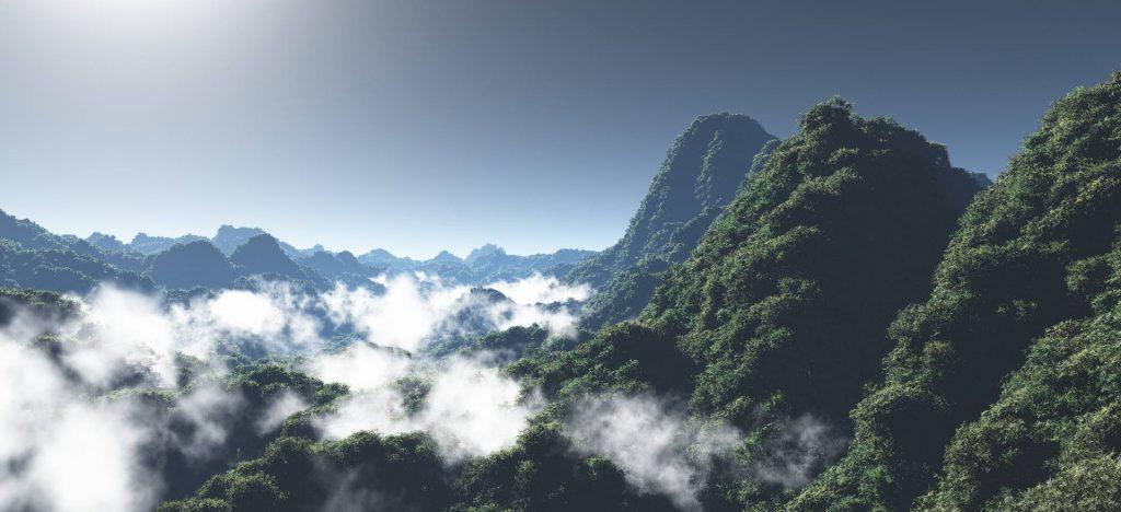 Vue rendered wooded valley