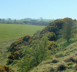 Overgrown side of Iron Age Hill Fort