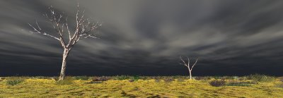 A render of two trees on a plain beneath a dark sky made using Vue 5 Infinite